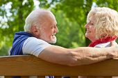 Happy senior people talking and flirting on a park bench in summer
