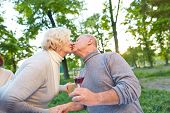 Senior couple kissing in a garden at a birthday party in summer