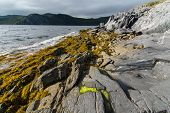 Rugged Newfoundland Shore