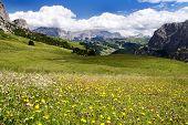 Blick vom Passo Gardena Alias Grodner Joch Sella Gruppe Dolomiten Italien