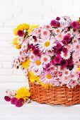 Beautiful flowers in wicker basket on table on light background