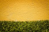 grungy wall and Green grass - Sandstone surface background