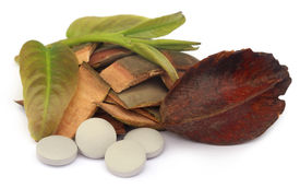 stock photo of arjuna  - Medicinal Terminalia arjuna with pills over white background - JPG