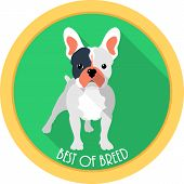 stock photo of medal  - dog French bulldog best of breed medal icon flat design - JPG