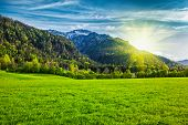 picture of bavarian alps  - Alpine meadow in Bavarian Alps - JPG
