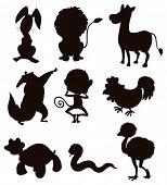 image of wild donkey  - Wild animals sketches in black and white - JPG