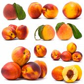 Juicy nectarines set