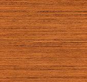 huge image of taek natural wood texture