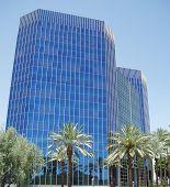 Blue Skyscraper With Palms
