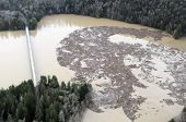 stock photo of mudslide  - A boom holds back logs dragged into Lake Mayfield by mudslides after too much rain on top of snow in the Cascade Mountains of Washington state - JPG