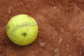 Softball, Well Used