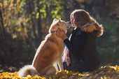 Young Woman On A Walk With Her Dog Breed Akita Inu. Friendship And Love Of Human And Dog poster