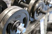 Metal Dumbbells On Rack In The Gym, Selective Focus. Concept For Weightlifting, Bodybuilding, Fitnes poster