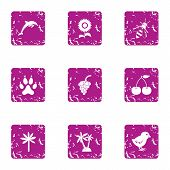 Creature Icons Set. Grunge Set Of 9 Creature Vector Icons For Web Isolated On White Background poster