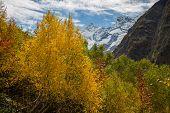 Autumn Mountain Valley Landscape. Mountain Lake In Autumn. Autumn Mountain Lake Panorama. poster