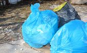 blue and black garbage bags on outdoor