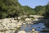 The Mountain River. Shallow Mountain River, Water Flows Through The Rocks. Rocks In The River Water. poster