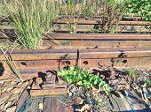 Rusty Abandoned Rails. Terrible Smell Rotten Old Wooden Ties With Phenol Asphalt Paint. Environmenta poster