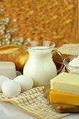 produtos lácteos e ovos frescos