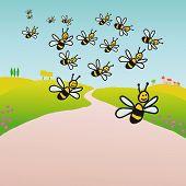 Bienen auf dem Lande