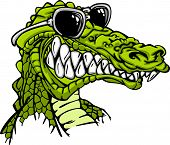 stock photo of gator  - Cartoon Image of a Crocodile or Alligator Wearing Sunglasses - JPG