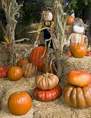 Halloween Pumpkins And Straw Dolls
