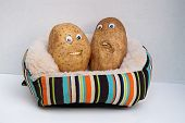 stock photo of couch potato  - Two happy smiling potatoes sitting on a couch - JPG