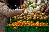 picture of homemaker  - Homemaker in a fruits stand  - JPG