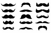 Man moustaches