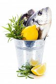 pescado fresco de dorada con verduras sobre blanco