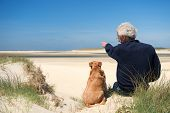 stock photo of dune grass  - Man sitting with dog on sand dune at Dutch beach on wadden island Texel - JPG