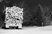 pic of semi trailer  - Semi trailer loaded with logs in black and white - JPG