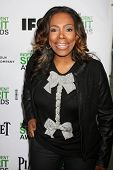 LOS ANGELES - JAN 11:  Sheryl Lee Ralph at the 2014 Film Independent Spirit Awards Nominee Brunch a