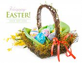easter egg in basket with spring flower isolated on white background