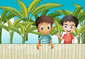 Illustration of the two friends near the wooden fence