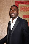 vLOS ANGELES - JAN 12:  Idris Elba at the HBO 2014 Golden Globe Party  at Beverly Hilton Hotel on January 12, 2014 in Beverly Hills, CA