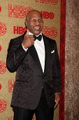 vLOS ANGELES - JAN 12:  Mike Tyson at the HBO 2014 Golden Globe Party  at Beverly Hilton Hotel on Ja