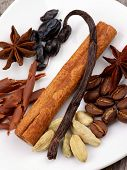 image of bean-pod  - Arrangement of Chocolate Slices Vanilla Pods Anise Stars Cardamon and Coffee Beans closeup on White Plate - JPG