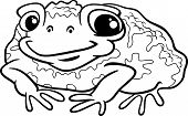 Toad Cartoon Coloring Page