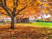 Autumn Farm Scene