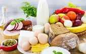 Miscellaneous Food Dairy Products  Bread Meat
