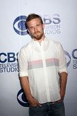 LOS ANGELES - MAY 19:  Cam Gigandet at the CBS Summer Soiree at the London Hotel on May 19, 2014 in
