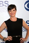 LOS ANGELES - MAY 19:  Zoe McLellan at the CBS Summer Soiree at the London Hotel on May 19, 2014 in