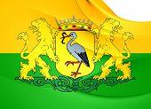 Flag Of Hague