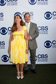 LOS ANGELES - MAY 19:  Wendy Bridges, Beau Bridges at the CBS Summer Soiree at the London Hotel on May 19, 2014 in West Hollywood, CA