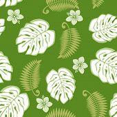 Seamless monstera pattern