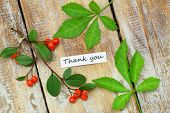 Thank you card with green leaves and rowan berries on rustic wooden surface