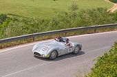 Cooper T33 Jaguar (1954) In Mille Miglia 2014