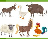 picture of horses ass  - Cartoon Illustration of Funny Farm Animals Set - JPG