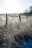 Beautiful Christmas Winter Landscape-field Covered With White Snow
